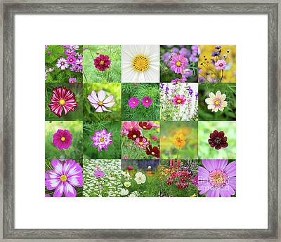 Into The Cosmos Framed Print by Tim Gainey