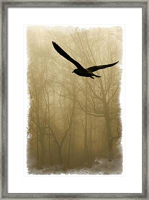 Framed Print featuring the photograph Into The Fog by Harry Spitz