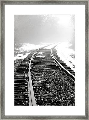 Into The Fog Framed Print by Olivier Le Queinec