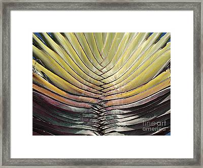 Into The Fold Framed Print