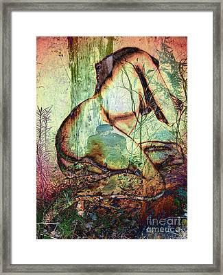 Into The Forest 10 Framed Print
