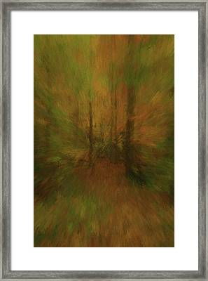 Into The Forest Autumn Abstract Framed Print