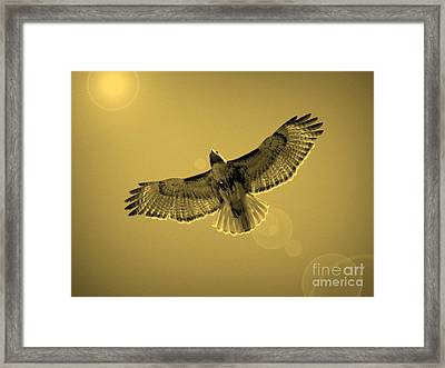 Into The Light - Sepia Framed Print by Carol Groenen