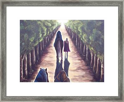 Into The Light  Framed Print by Diane Daigle