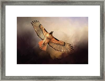 Framed Print featuring the photograph Into The Light by Donna Kennedy