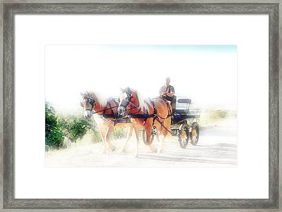 Into The Light Framed Print by Dorothy Berry-Lound