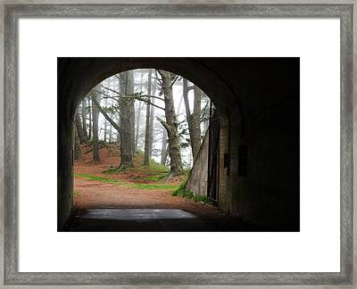 Into The Light Framed Print by Eric Foltz