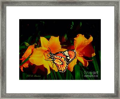 Into The Light Of Day Framed Print by Kimberlee Baxter