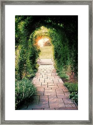 Into The Light Framed Print by Scott Nelson