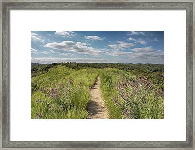 Framed Print featuring the photograph Into The Loess Hills by Susan Rissi Tregoning