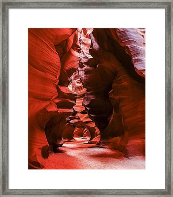 Into The Maze Framed Print