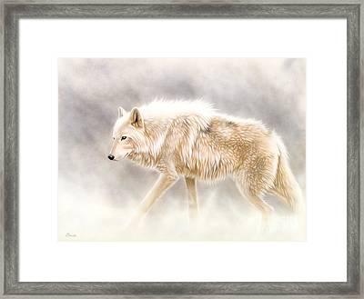 Into The Mist Framed Print by Sandi Baker