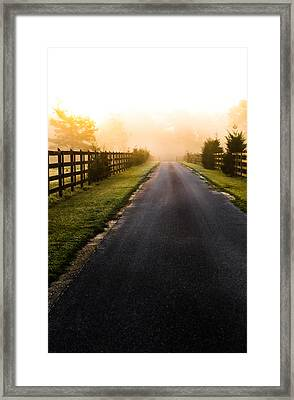Into The Morning Framed Print by Shelby  Young