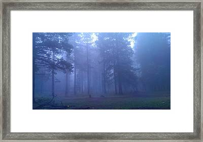 Into The Mystic Framed Print by MeMi Renee