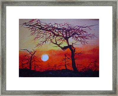 Into The Night Framed Print by Min Wang
