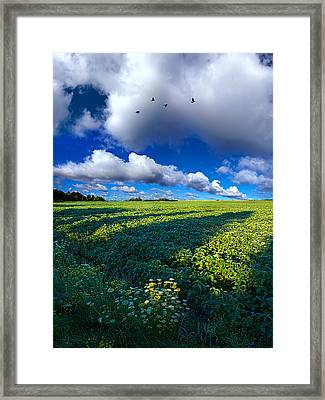 Into The Open Framed Print
