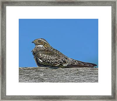 Into The Out Framed Print by Tony Beck