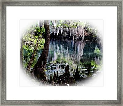 Into The Past Framed Print by Sheri McLeroy