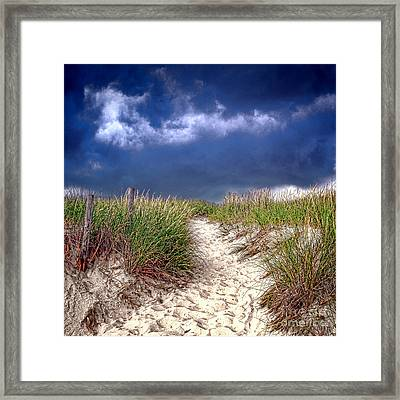 Into The Storm Framed Print by Olivier Le Queinec