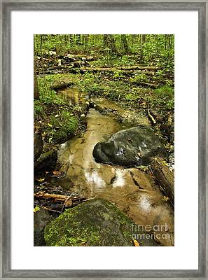 Into The Stream 8 Framed Print