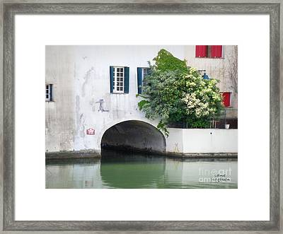 Into The Unknown Framed Print by Lainie Wrightson