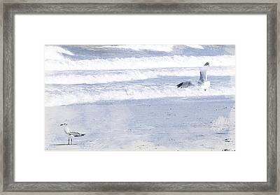 Into The Waves Framed Print by JAMART Photography