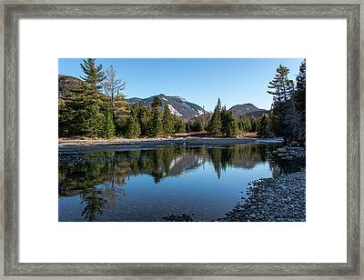 Into The Wild Framed Print
