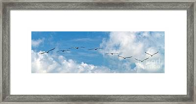 Framed Print featuring the photograph Into The Wind by Ken Frischkorn