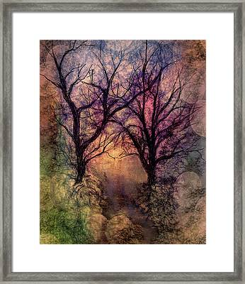 Into The Woods Framed Print by Annette Berglund