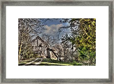 Into The Woods Framed Print by Deborah Klubertanz