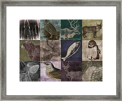 Into The Woods Framed Print by Mindy Sommers