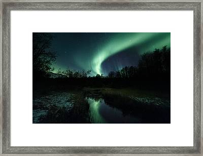 Into The Woods Framed Print by Tor-Ivar Naess