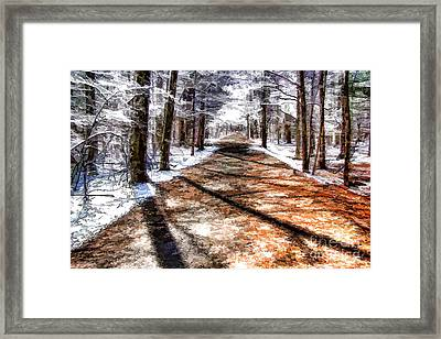 Into Winter Framed Print