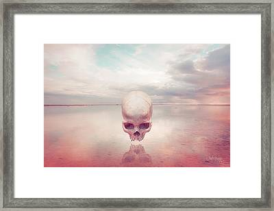 Framed Print featuring the photograph Introlevity by Joseph Westrupp