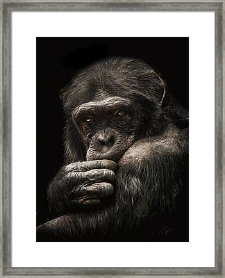 Introvert Framed Print by Paul Neville