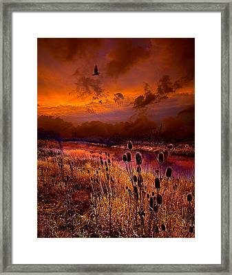 Intuition Framed Print by Phil Koch