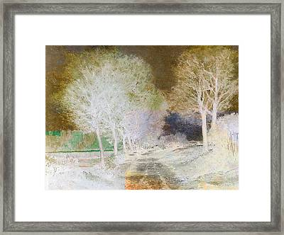 Inv Blend 4 Sisley Framed Print by David Bridburg