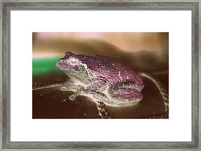 Radioactive Frog Framed Print by Anita Hiltz
