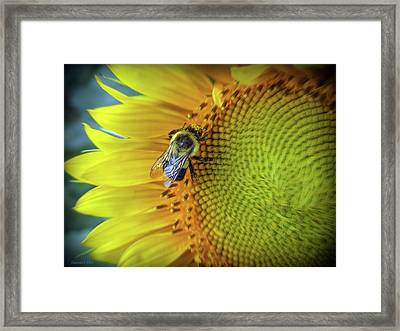 Investigating Framed Print