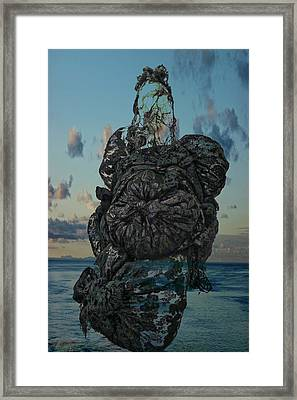 Framed Print featuring the photograph Invisable Lady by Joan Reese