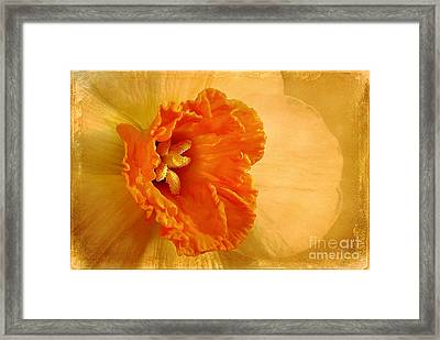 Inviting Framed Print by Lois Bryan