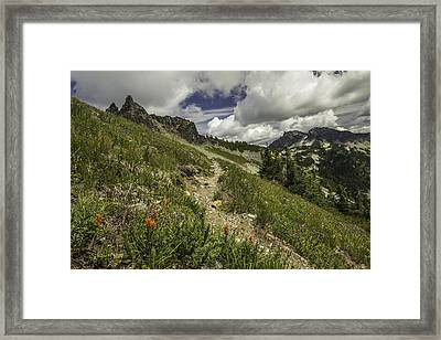 Inviting Trail Framed Print