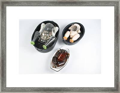 Invitro Conceptual Art Three Pcs Framed Print by Michael Jude Russo