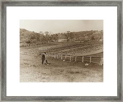 Framed Print featuring the photograph Inwood 1906 by Cole Thompson