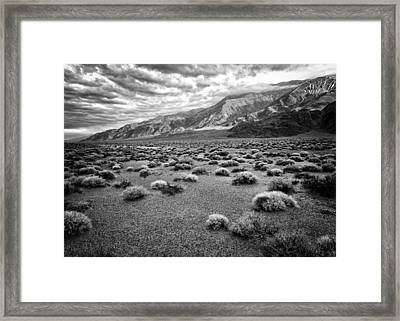 Inyo Mountain Morning In Black And White Framed Print