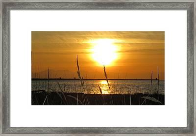 Iona Beach Park Framed Print