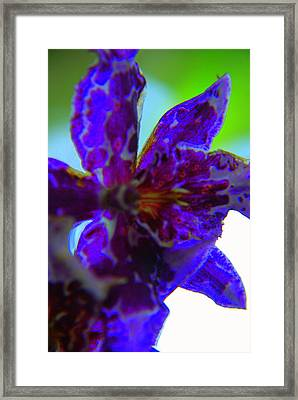 Ionized Framed Print