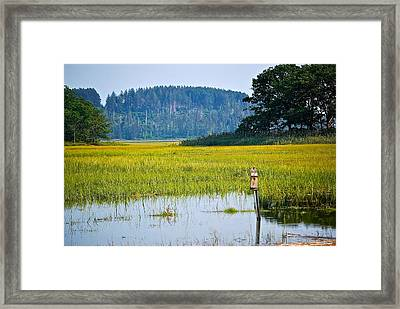Ipswich Nature Preserve  Framed Print