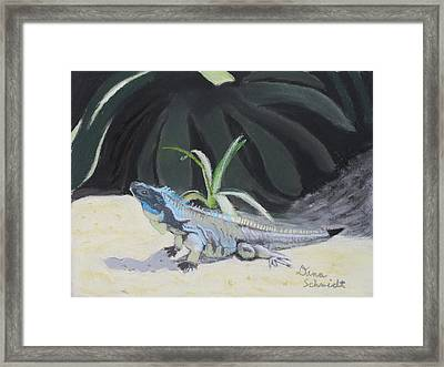 Iquana Lizard At Sarasota Jungle Framed Print