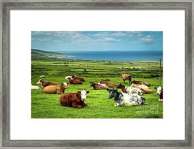Ireland - Westcoast Framed Print by Juergen Klust